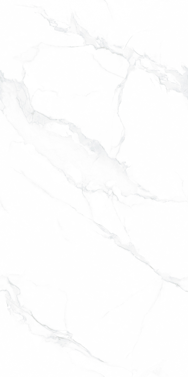 X715LW61 千山暮雪